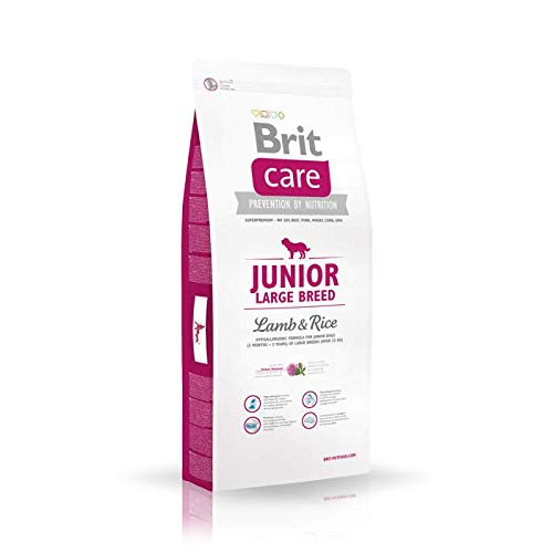 Junior Large Breed Lamb Rice 1er Pack 1x 1
