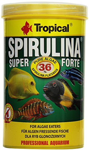 Tropical Super Forte 36% Flockenfutter 1er Pack 1x 1 l