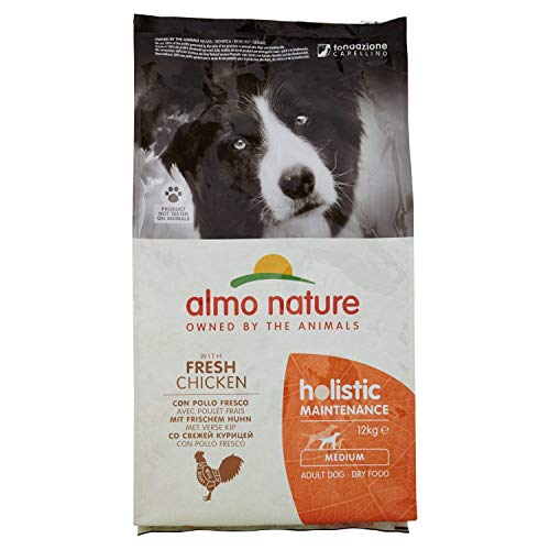 Holistic Medium Huhn Reis 12 kg