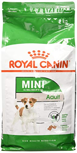 Royal Canin 35205 Mini Adult   1er Pack 1x 2 kg