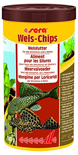 sera Wels-Chips, Die Chips für raspelnde Welse (z.B. Ancistrus und L-Welse), 1er Pack (1 x 1000milliliters) -