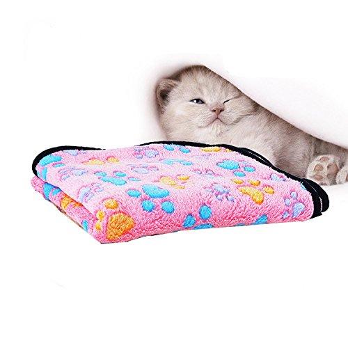 wärmedecke für katzen