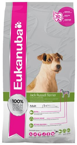 Breed Jack Russell Terrier 2kg